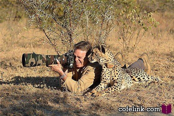 آموزش عکاسی به یوزپلنگ