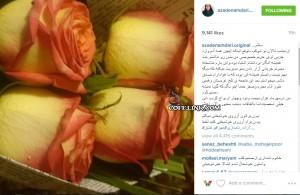 تصویری از اینستاگرام آزاده نامداری