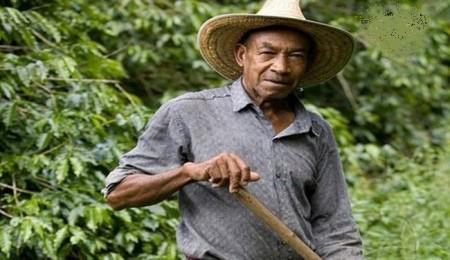 کشاورز کلمبیایی با گنج ۶۰۰ میلیون دلاری چه کرد؟