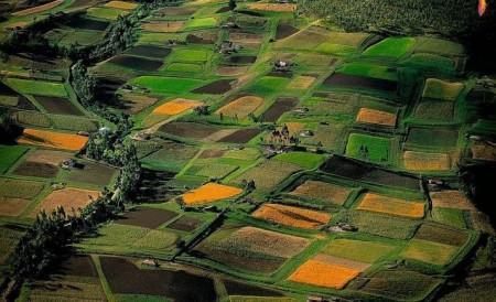 Yann-Arthus-Bertrand-nature-photos-