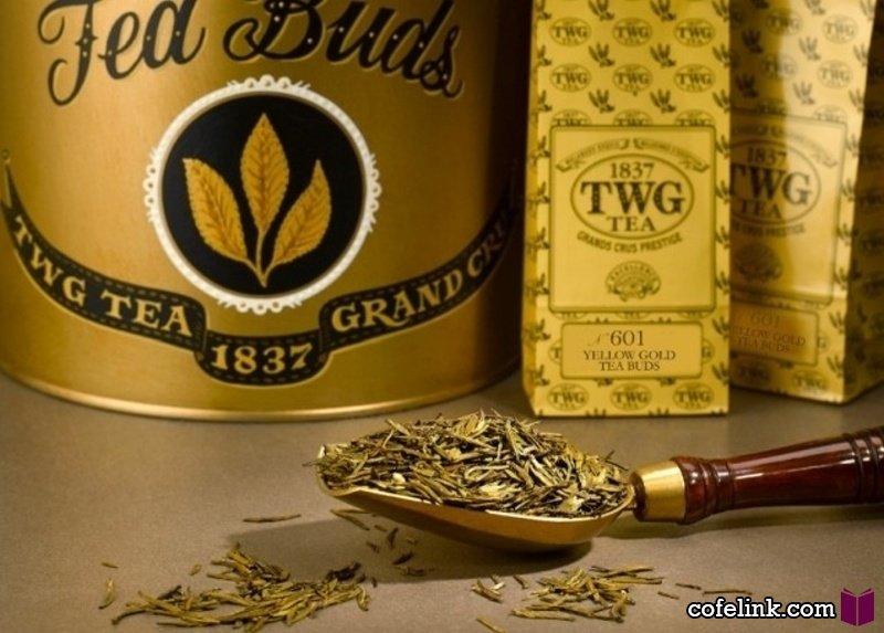 چای طلا