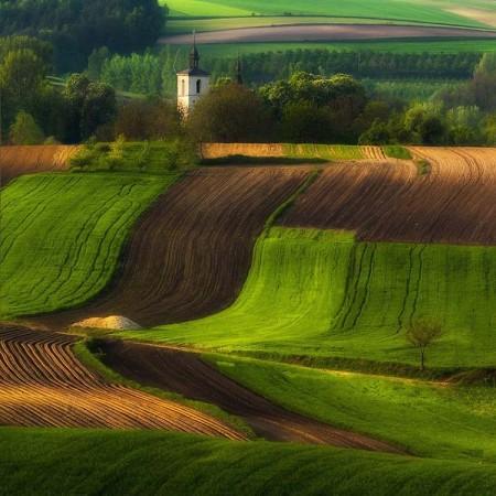 عکاسی از مزارع